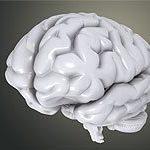 La nueva actividad extraescolar: La inteligencia emocional