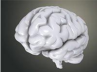 Actividades escolares: La inteligencia emocional