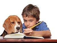 Mi hijo no quiere estudiar ni hacer los deberes…