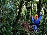 Excursiones Escolares, Multiaventura en los Parques de Árboles